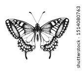 butterfly  vector illustration... | Shutterstock .eps vector #1514080763