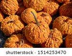 Large Orange Pumpkins With...