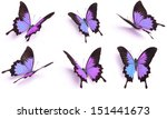 Stock photo set of purple butterfly papilio ulysses isolated on white background 151441673