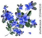 watercolor blue flowers in a...   Shutterstock . vector #151446110
