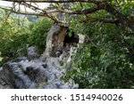 Stone Cave  Green Branches Of...