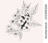 graphic drawing with flowers ... | Shutterstock .eps vector #151500260