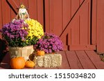 Fall Decoration Of...