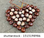 Chestnuts On The Ground. Ripe...