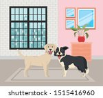 cute little dogs in the house... | Shutterstock .eps vector #1515416960