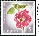 Small photo of ALBANIA - CIRCA 1967: post stamp printed in Albania (shqiperia) shows hollyhock (alcea, althaea rosea, lule sefa) from flowers series, Scott catalog 1019 A222 15q gray green red white, circa 1967