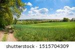 Saarland,Wanderweg Landschaft Natur Panorama bei Ottweiler im Sommer