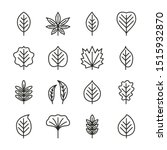 tree leaves flat line icons... | Shutterstock .eps vector #1515932870