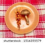 Mushroom And Sea Buckthorn On...