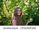 Girl Eats Apple. Girl In The...