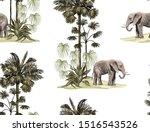 beautiful hand drawn elephant ... | Shutterstock .eps vector #1516543526