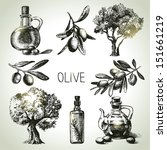 hand drawn olive set  | Shutterstock .eps vector #151661219
