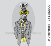 Stock vector fashion illustration of zebra in yellow glasses isolated on grey background 151682000