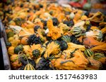 Unique Gourds Are Produced In...