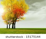 autumn scenery | Shutterstock . vector #15175144