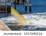Raw Untreated Yellow Water Or...