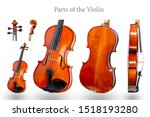 Parts Of The Violin On White...