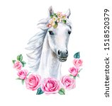 White Horse With Pink Floral...