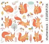 Squirrel Set Hand Drawn Style....