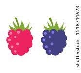 Raspberry Vector Icon...