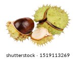 A Group Of Ripe Chestnuts In A...