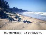Ocean Richards Bay South Africa