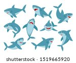 Shark. Cartoon Ocean Fish...