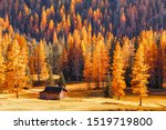 Small photo of Seasonal autumnal scenery in highlands. Alpine landscape - wooden cabin circled by colorful yellow and red fall trees in Dolomite mountains, Southern Tyrol area. Popular travel destination in autumn.