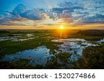 Sunrise in Pantanal, Brazil. Pantanal is the world