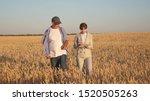 Farmer Sells Wheat Grain To...