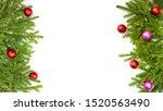 banner. fir branches on a white ...   Shutterstock . vector #1520563490