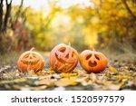 Three Cute Halloween Pumpkins...