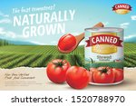 canned tomato ads with fresh... | Shutterstock .eps vector #1520788970