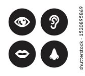 set of four human organ vector...   Shutterstock .eps vector #1520895869