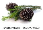 Two Pine Cones Isolated On A...