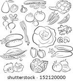 vector illustration of... | Shutterstock .eps vector #152120000