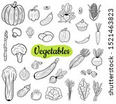 big collection of vegetables...   Shutterstock .eps vector #1521463823