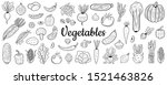 collection of vegetables... | Shutterstock .eps vector #1521463826