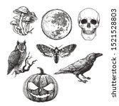 vector vintage set of halloween ... | Shutterstock .eps vector #1521528803