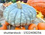 Blue Pumpkin Halloween Display...