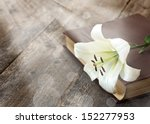white lily illuminated by the... | Shutterstock . vector #152277953