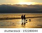 walking dogs on beach at sunset   Shutterstock . vector #152280044