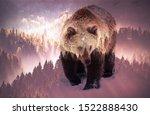 Double Exposure Of Brown Bear...