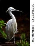 A Wispy Image Of A Snowy Egret.