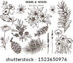 herbal illustration on label... | Shutterstock .eps vector #1523650976