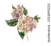 watercolor vintage floral... | Shutterstock . vector #1523695223