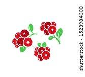 cranberry. logo. red berries.... | Shutterstock .eps vector #1523984300