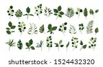 set of greenery leaves twig... | Shutterstock .eps vector #1524432320
