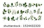 set of greenery leaves twig... | Shutterstock .eps vector #1524432320