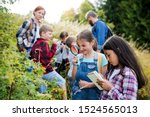 Group Of School Children With...